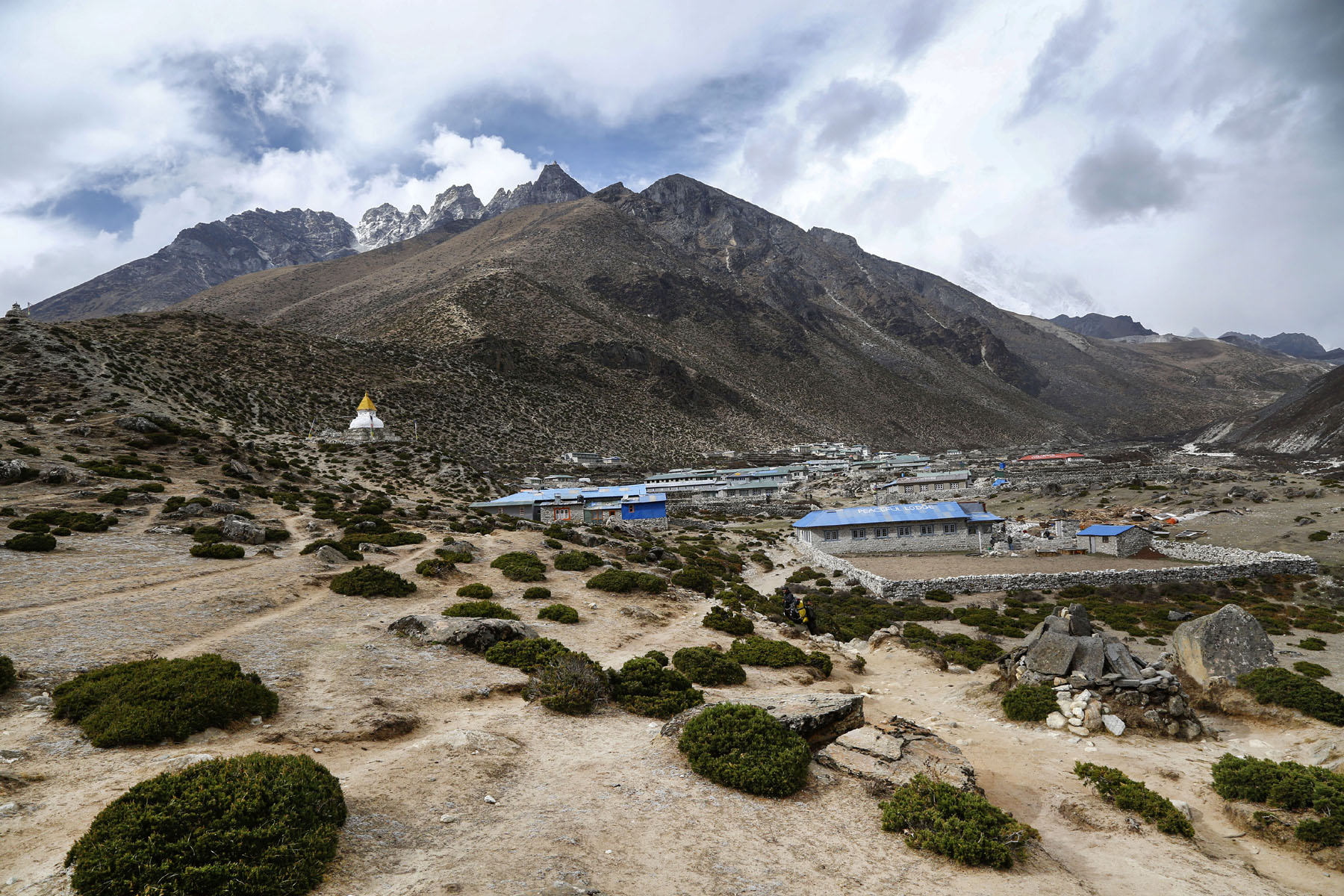 Vegetation Expanding At High Altitudes In Himalayas, Everest Region Due To Global Warming